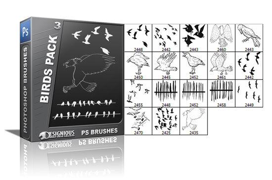 Birds brushes pack 3 Nature brushes [tag]