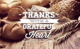 Thanksgiving typographic elements Typographic Templates label