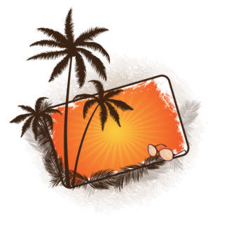 Vector Summer Frame With Palm Trees Vector Illustrations palm