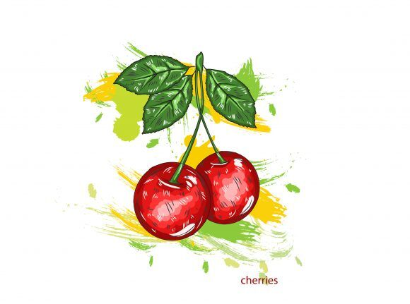 vector cherries with colorful splashes Vector Illustrations old
