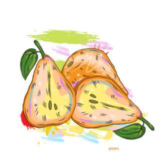 vector pears with colorful splashes Vector Illustrations old