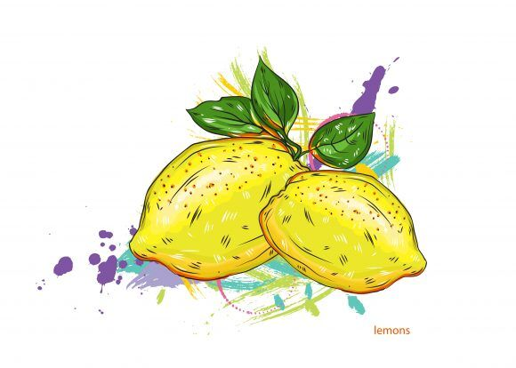 vector lemons with colorful splashes Vector Illustrations old