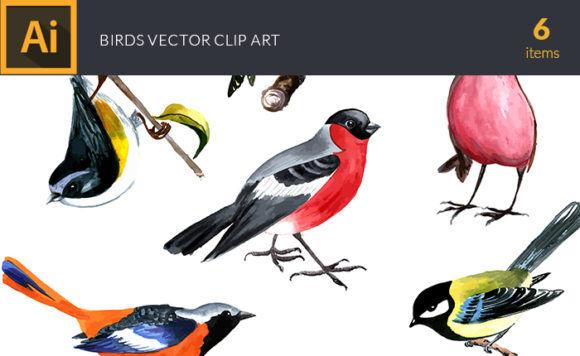 Watercolor Birds Vector Clipart Vector packs vector