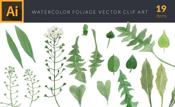 Watercolor Foliage Vector Set 3 Vector packs leaf