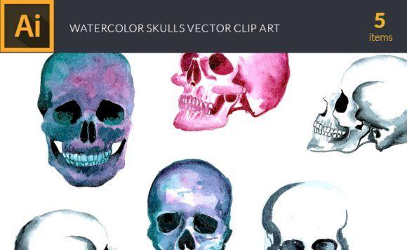 Watercolor Skulls Vector Clipart Vector packs vector