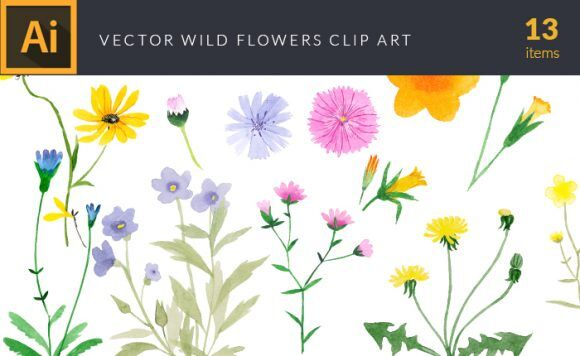 Watercolor Wild Flowers Vector Clipart Vector packs vector