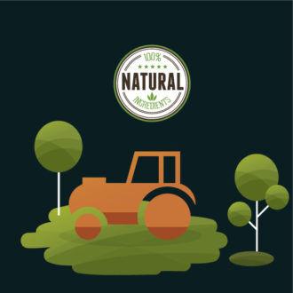 Eco vector illustration Vector Illustrations tree