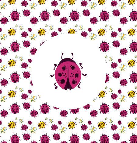 Illustrated flat vector Set Scenes ladybug