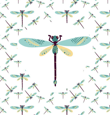 Illustrated flat vector Set Scenes dragonfly