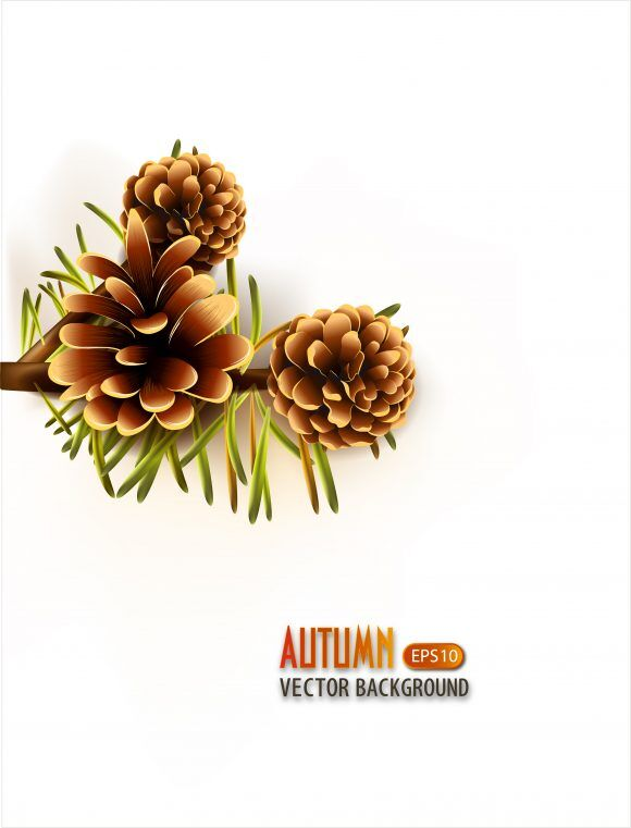 vector autumn background with pine Vector Illustrations decoration,ornate,abstract,symbol,design,illustration,background,art,artwork,creative,decor,elegant,image,vector,floral,leaf,plant,flower,fake,autumn,season,pine,