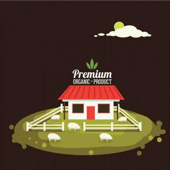 Farming vector illustration Vector Illustrations pig