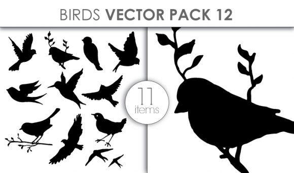 Vector Birds Pack 12 Vector packs vector