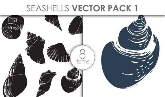 Vector Seashells Pack 1 Vector packs vector