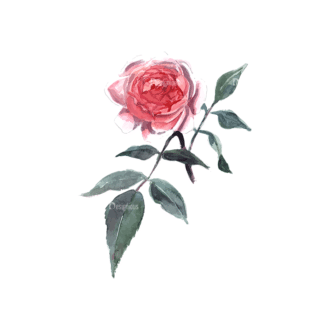 Roses Red 01 Clip Art - SVG & PNG vector