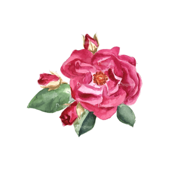Roses Red 02 Clip Art - SVG & PNG vector