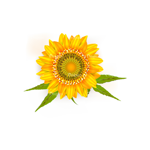 Autumn Elements Vector Flower Clip Art - SVG & PNG vector