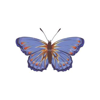 Butterflies Vector 6 3 Clip Art - SVG & PNG vector