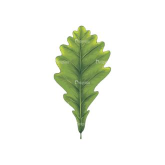 Leaves Vector 2 2 Clip Art - SVG & PNG vector