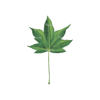 Leaves Vector 2 3 Clip Art - SVG & PNG vector