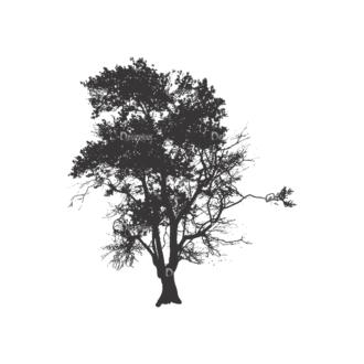 Normal Trees Vector 1 4 Clip Art - SVG & PNG vector