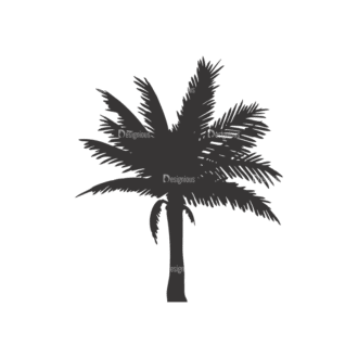Palm Trees Vector 1 9 Clip Art - SVG & PNG palm