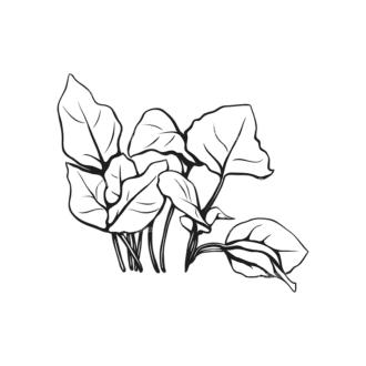 Tropical Plants Vector 1 4 Clip Art - SVG & PNG tropical