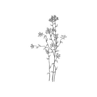 Tropical Plants Vector 1 9 Clip Art - SVG & PNG tropical