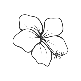 Tropical Plants Vector 2 14 Clip Art - SVG & PNG tropical