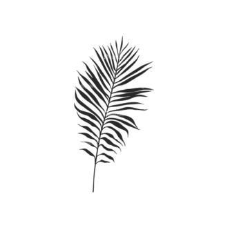 Tropical Plants Vector 2 21 Clip Art - SVG & PNG tropical