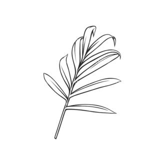 Tropical Plants Vector 2 4 Clip Art - SVG & PNG tropical