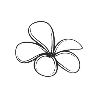 Tropical Plants Vector 2 8 Clip Art - SVG & PNG tropical