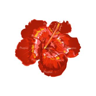 Vector Floral Ornaments 6 Vector Leaves 19 Clip Art - SVG & PNG floral