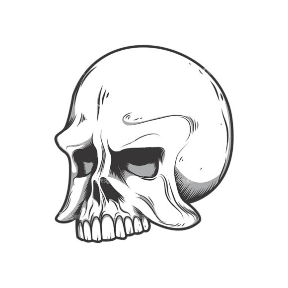 Skull Vector Clipart 10-4 Clip Art - SVG & PNG vector