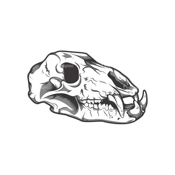 Skull Vector Clipart 12-3 Clip Art - SVG & PNG vector
