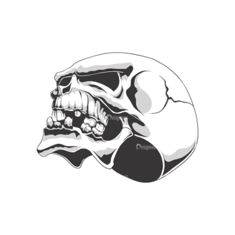 Skull Vector Clipart 18-2 Clip Art - SVG & PNG vector