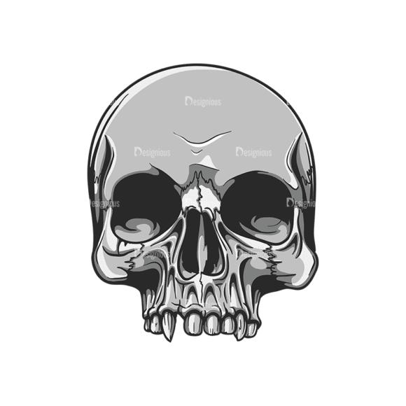 Skull Vector Clipart 20-5 Clip Art - SVG & PNG vector