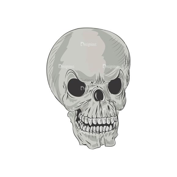 Skull Vector Clipart 3-5 Clip Art - SVG & PNG vector