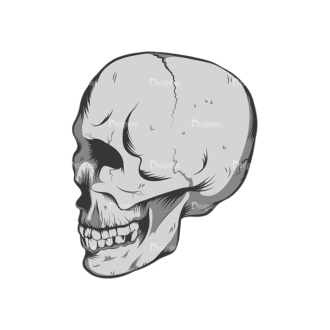 Skull Vector Clipart 6-2 Clip Art - SVG & PNG vector
