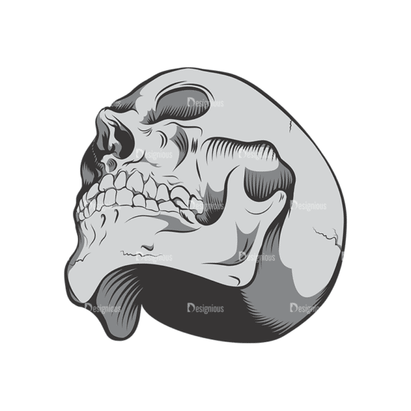 Skull Vector Clipart 6-4 Clip Art - SVG & PNG vector