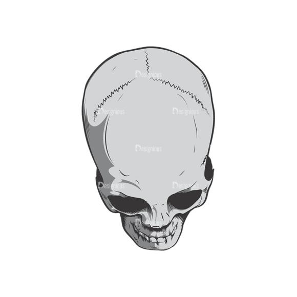 Skull Vector Clipart 6-7 Clip Art - SVG & PNG vector