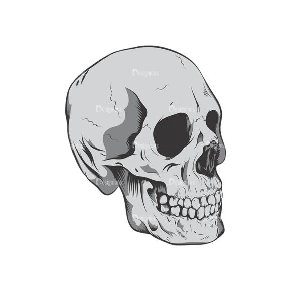 Skull Vector Clipart 6-8 Clip Art - SVG & PNG vector